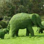 Топиарий в виде семейства слонов
